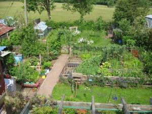 station_road permaculture