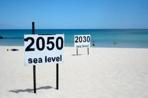 SLR 2030